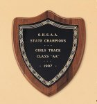 American Walnut Shield Plaque with a Black Brass Plate Achievement Awards