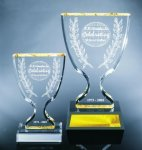 Trophy Cup Achievement Awards