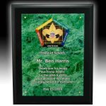 Acylic Faceplate Plaque Marble Acrylic Awards Trophy