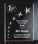 RIST-7 3 Dimensional Carved Star Plaque  Sales Awards
