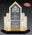 Star Acrylic Trophy Award with Engraved Center Piece Star Awards